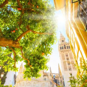 Kurztrip nach Andalusien: 4 Tage Sevilla im tollen Hostel inkl. Flug nur 83€