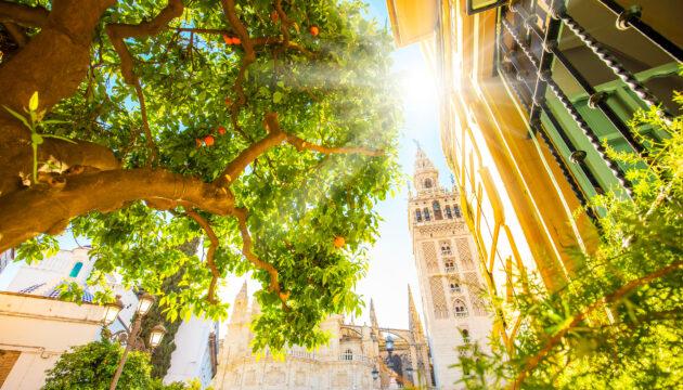 Spanien Sevilla Sonne