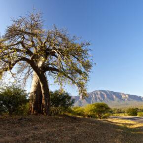10 Tage Südafrika inkl. Unterkünften, Halbpension & Extras für 899€