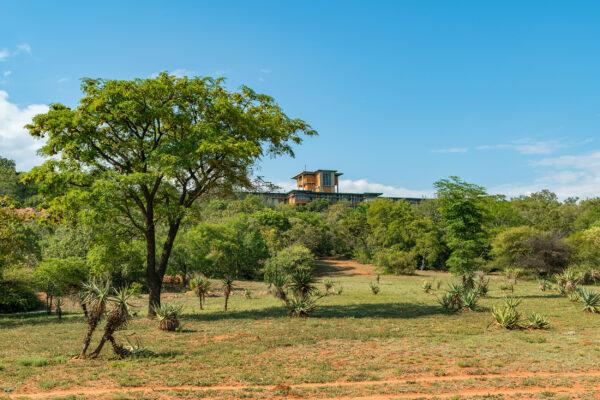 Südafrika Pretoria National Botanical Garden