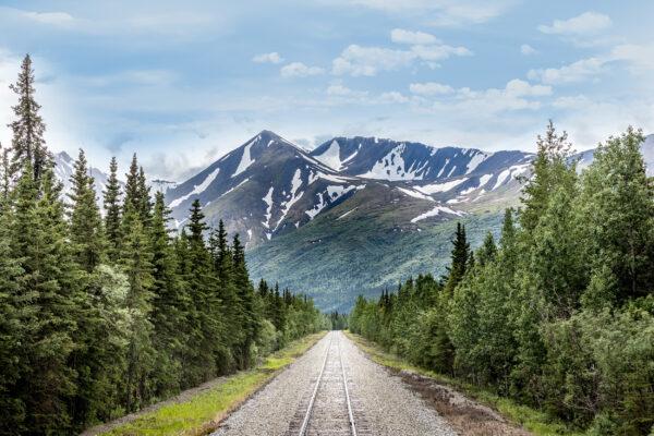 Alaska Denali Nationalpark