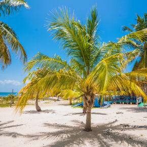 12 Tage nach Kuba im 4* Hotel mit All Inclusive, Flug, Transfer & Zug nur 1.301€