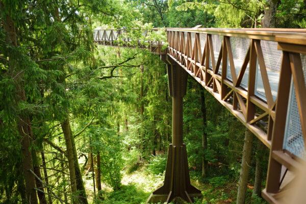 Litauen Anyksciai Wanderweg