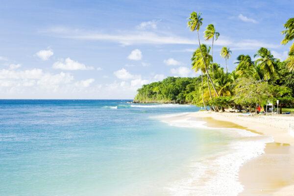 Tobago Mount Irvine Bay