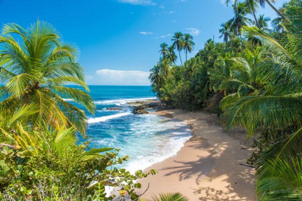 Costa Rica Puerto Viejo Strand von Manzanillo