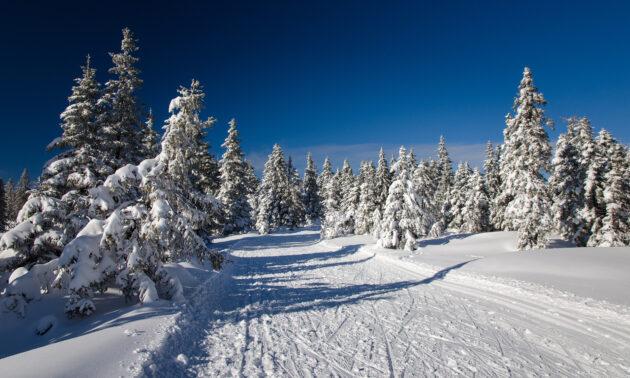Slowenien Skigebiet Rogla