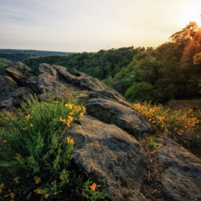 Nationalpark Harz: 3 Tage im TOP 4* Resort mit Frühstück & Wellness nur 110€