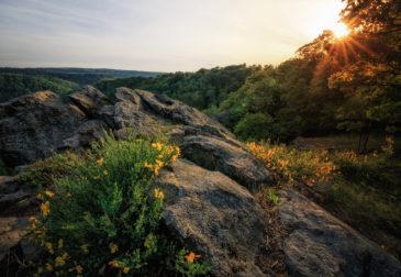 Nationalpark Harz: 3 Tage im 4* Resort mit Frühstück & Wellness ab 110€