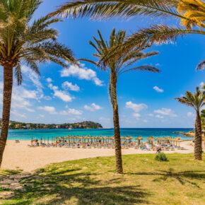 Mallorca Last Minute: 5 Tage im TOP 4* Hotel an der Strandpromenade mit Frühstück, Flug, Transfer & Zug nur 212€