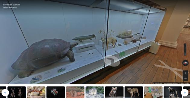 Australian Museum Rundgang