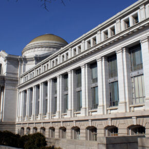 Das Nationale Naturkundemuseum in Washington virtuell erleben