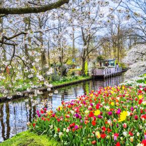 Urlaub in den Niederlanden: Tourismusbetriebe in Holland dürfen teilweise wieder vermieten