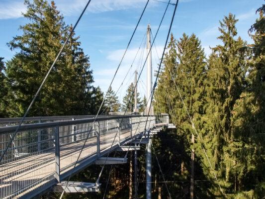 Deutschland Bodensee Baumwipfelpfad