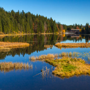 Kurztrip Bayerischer Wald: 4 Tage Natur pur im 3* Hotel mit All Inclusive & Sauna ab 99€