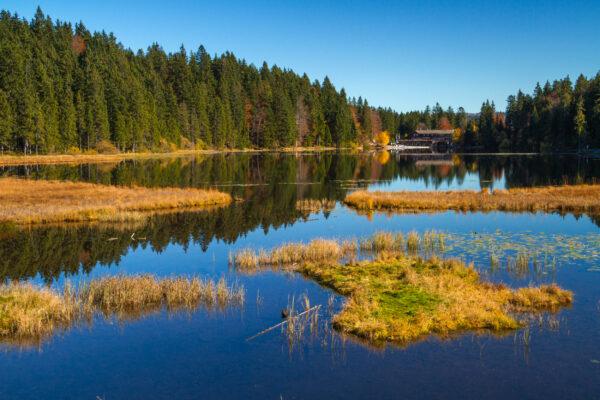 Bayerischer Wald Großer Arbersee