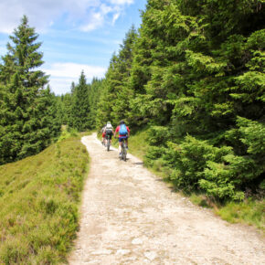 Entspannung im Harz: 4 Tage All Inclusive in idyllischer Unterkunft ab 99€