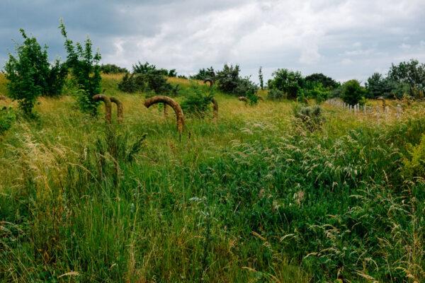 Rügen Urlaub: Arkona Bunker