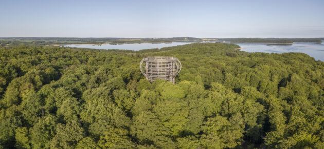 Rügen Urlaub: Baumwipfelpfad