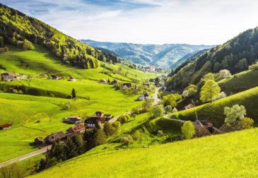 Wellness-Auszeit im Schwarzwald: 3 Tage mit 3.5* Hotel, Frühstück, 4-Gänge-Dinner & Extr...