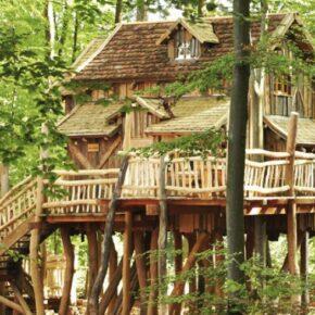 Familienspaß: 2 Tage im TOP Baumhaus im Natur-Resort Tripsdrill & Wildparadies mit Frühstück ab 47€