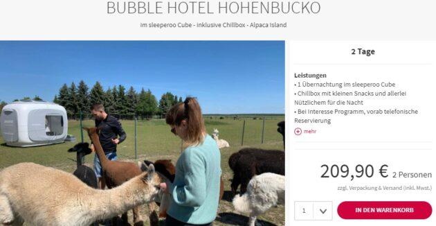 Alpaka Bubble