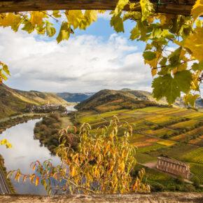 Traumhafter Herbst an der Mosel: 2 Tage Kurztrip übers Wochenende in 3* Hotel nur 19€