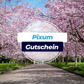 Pixum Gutschein