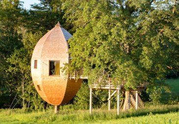 Übernachten in den Bäumen: 3 Tage im Allgäu ins Baumhaushotel inkl. Frühstück ab 138€