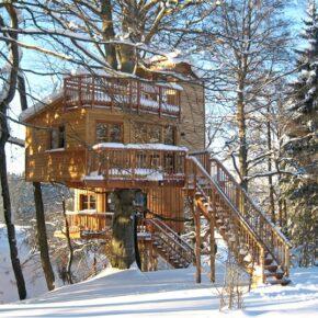 Baumhaus Vogelfrei